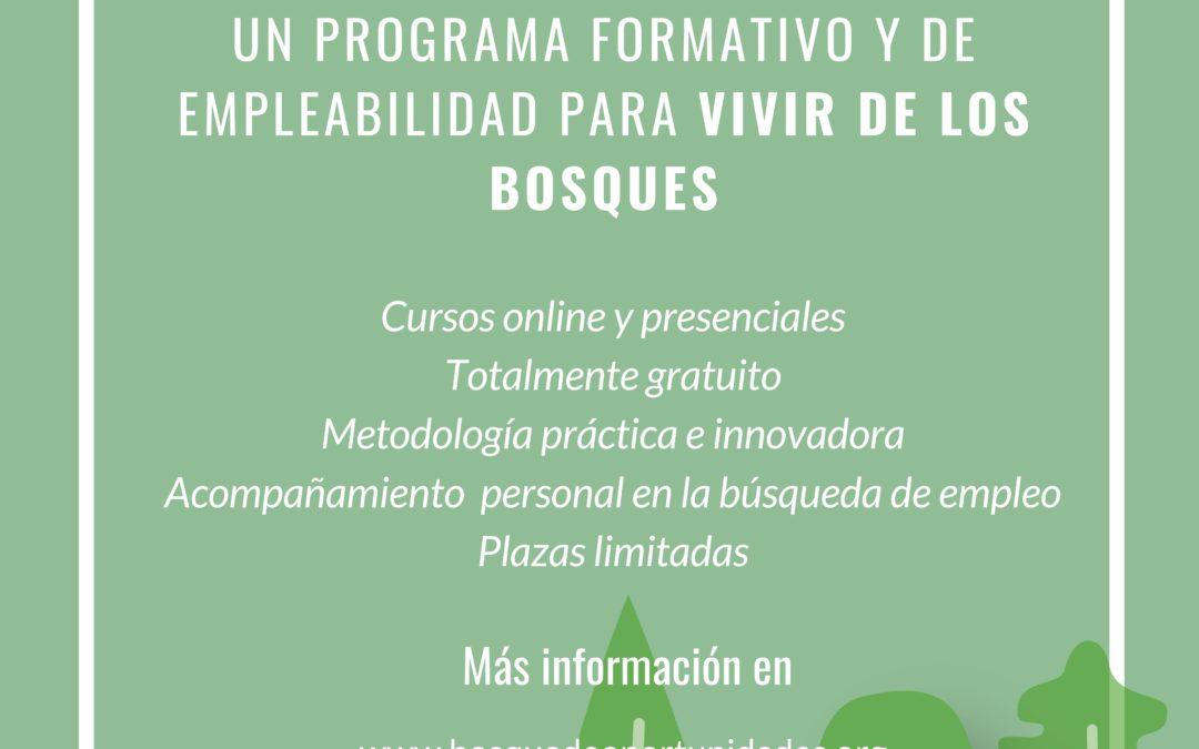 Un bosque de oportunidades, una propuesta para generar empleo relacionado con la economía verde y circular.