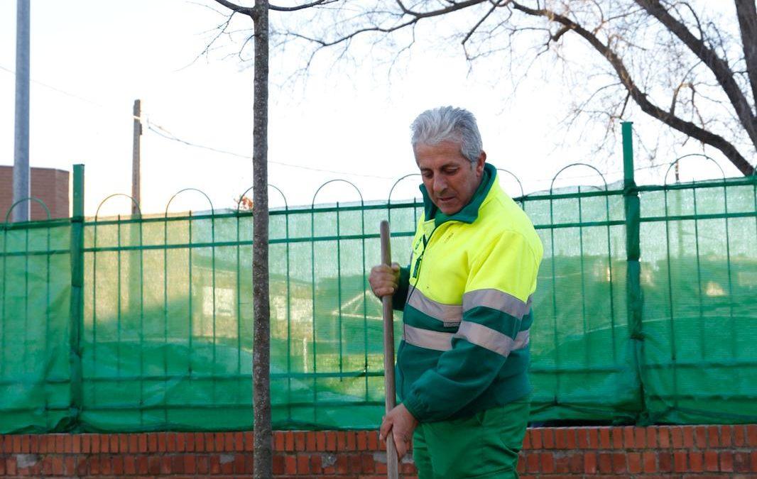 El cuerpo de jardinería de la brigada municipal planta 15 almeces en el CEIP Campo Arañuelo.