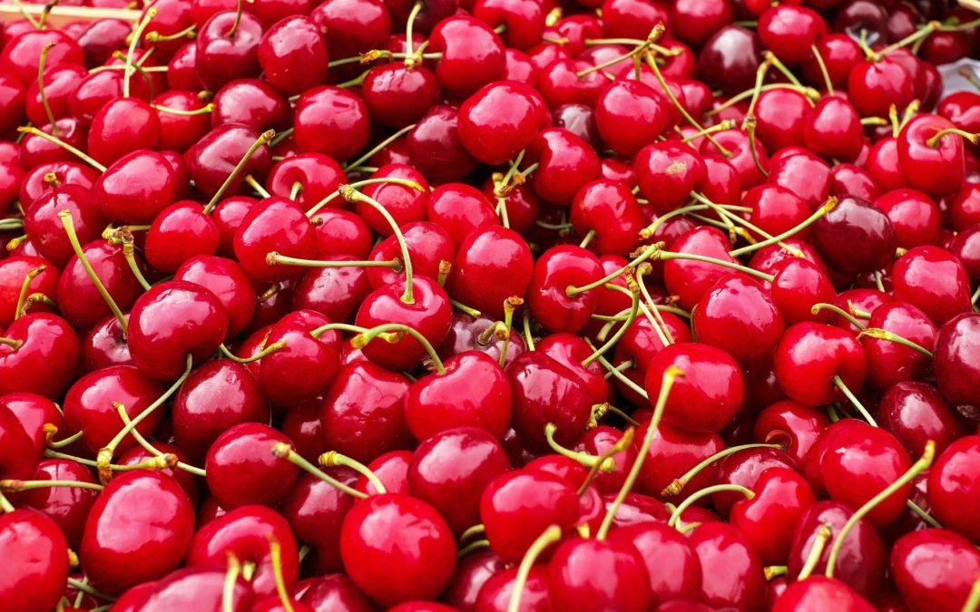 Ofertas de Empleo para la campaña de recogida de cerezas.